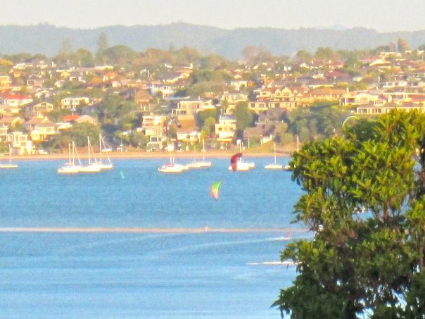 kite surfing on Tamaki Estuary at 8pm (mrscarmichael)