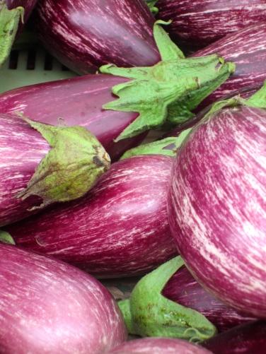 I say aubergine, you may say egg plant (mrscarmichael)