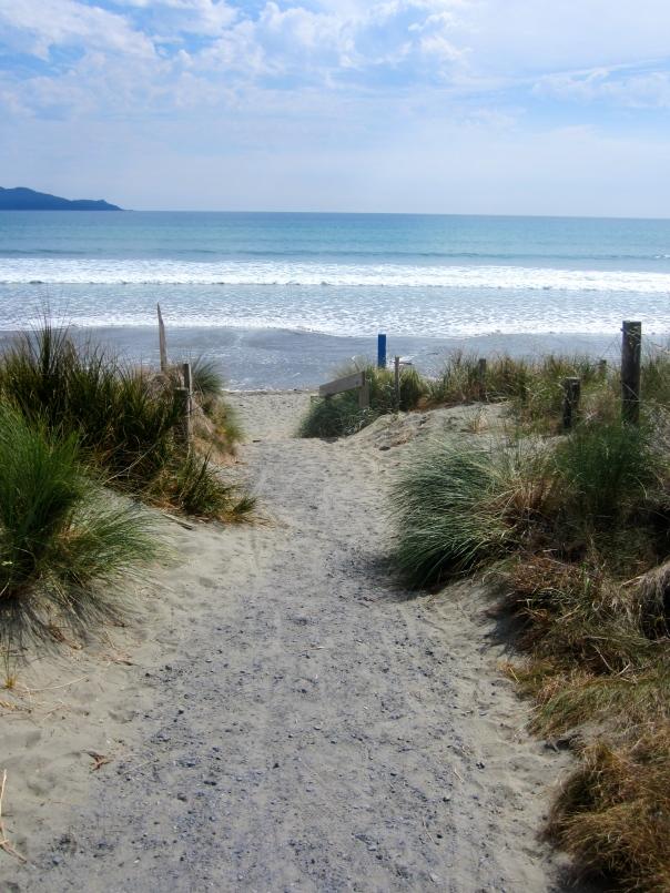 Tasman Sea (mrscarmichael)