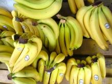 bunches of bananas (mrscarmichael)