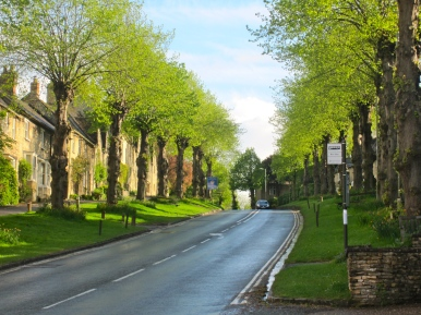 pull over, pull over, Cotswold photo opportunity (mrscarmichael)