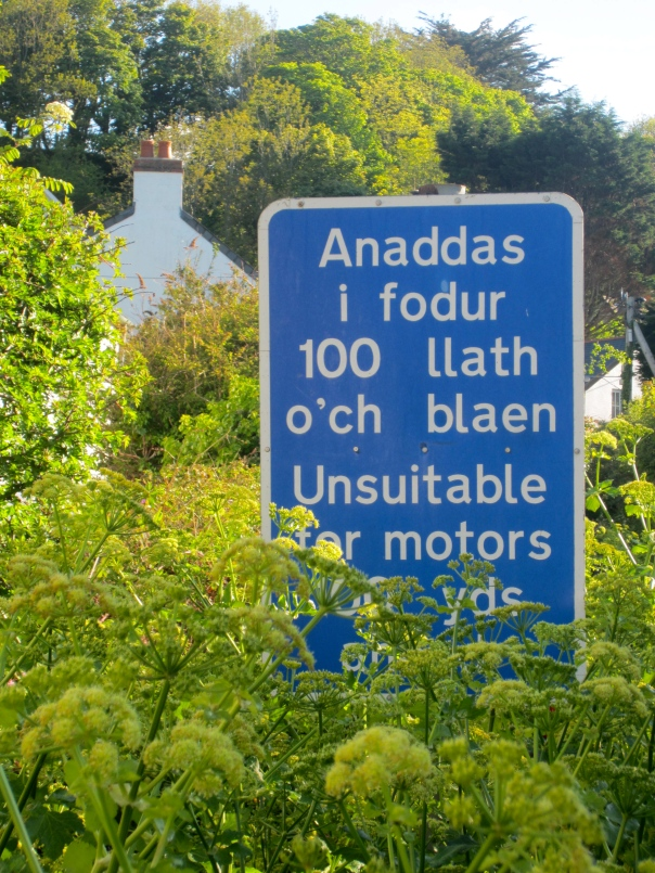 translation required (mrscarmichael)