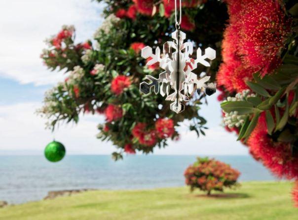 a kiwi christmas scene