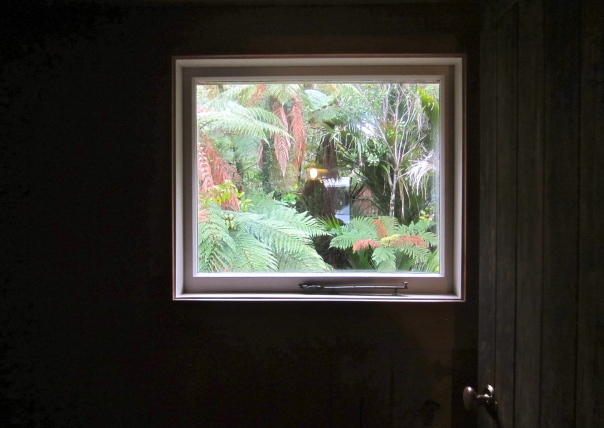 palms provide promised privacy (mrscarmichael)