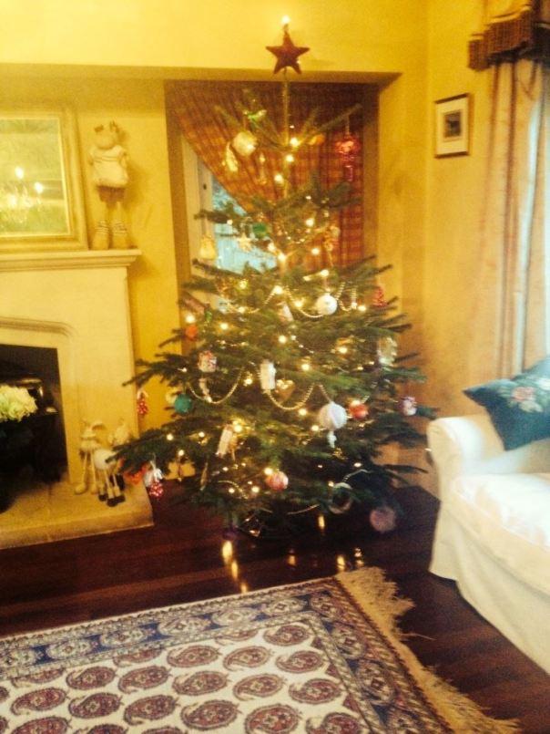 christmas tree numero dos (mrscarmichael)